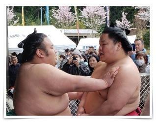 大栄翔と貴景勝は仲良し?卵かけごはんが美味しそう!白鵬に勝ち越し?!